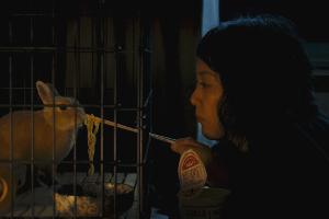 Rinko Kikuchi i el conill Bunzo a 'Kumiko, the Treasure Hunter'